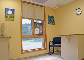 Emergency Vet Exam Room